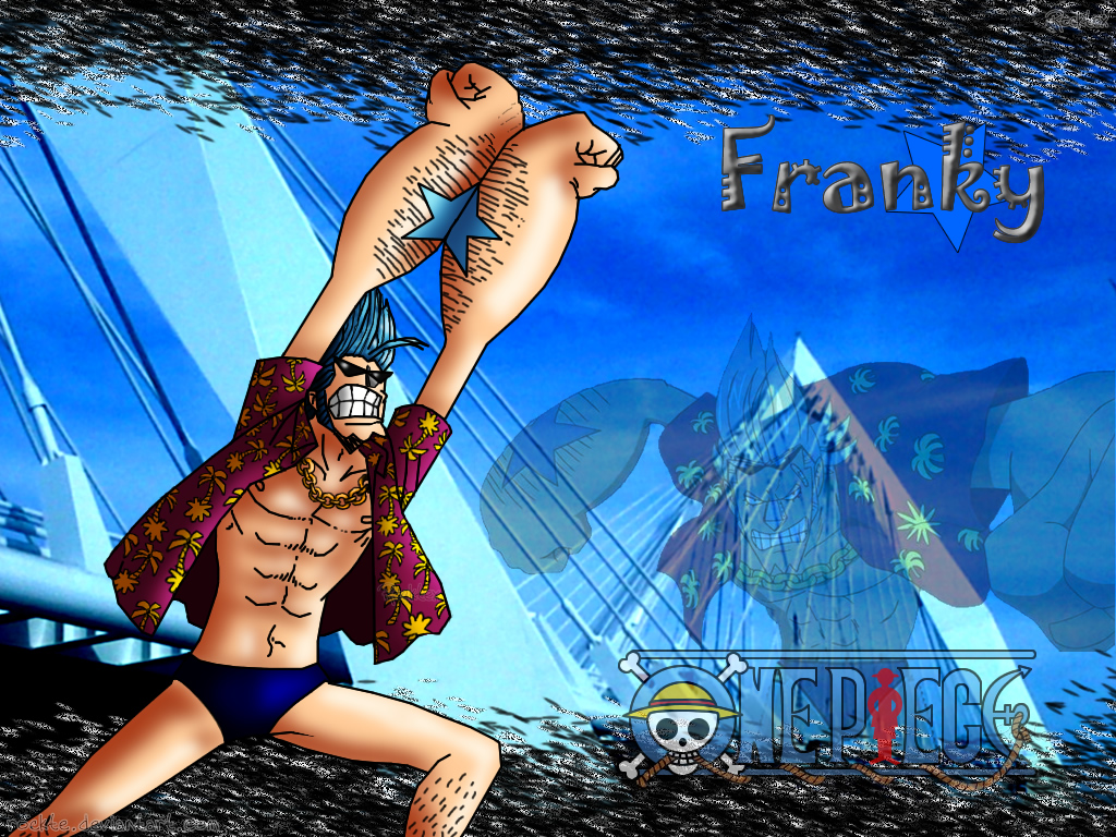 Franky the Cyborg Shipwright